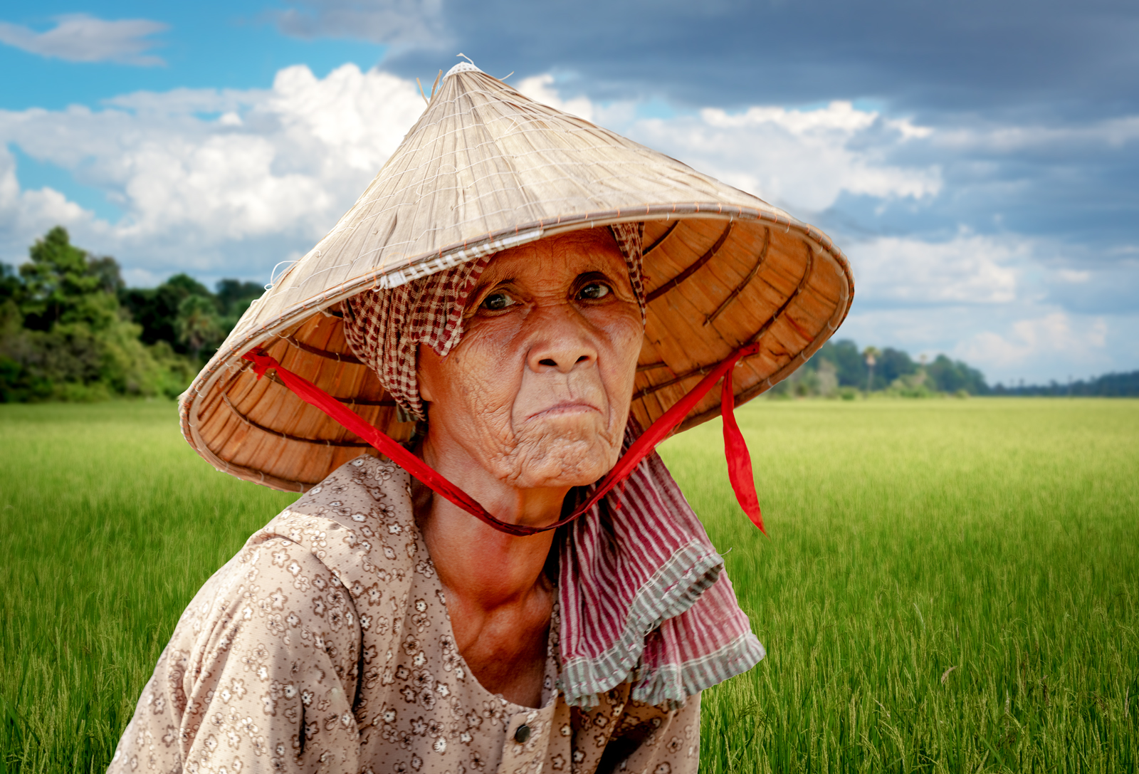 Kesor in the rice fields
