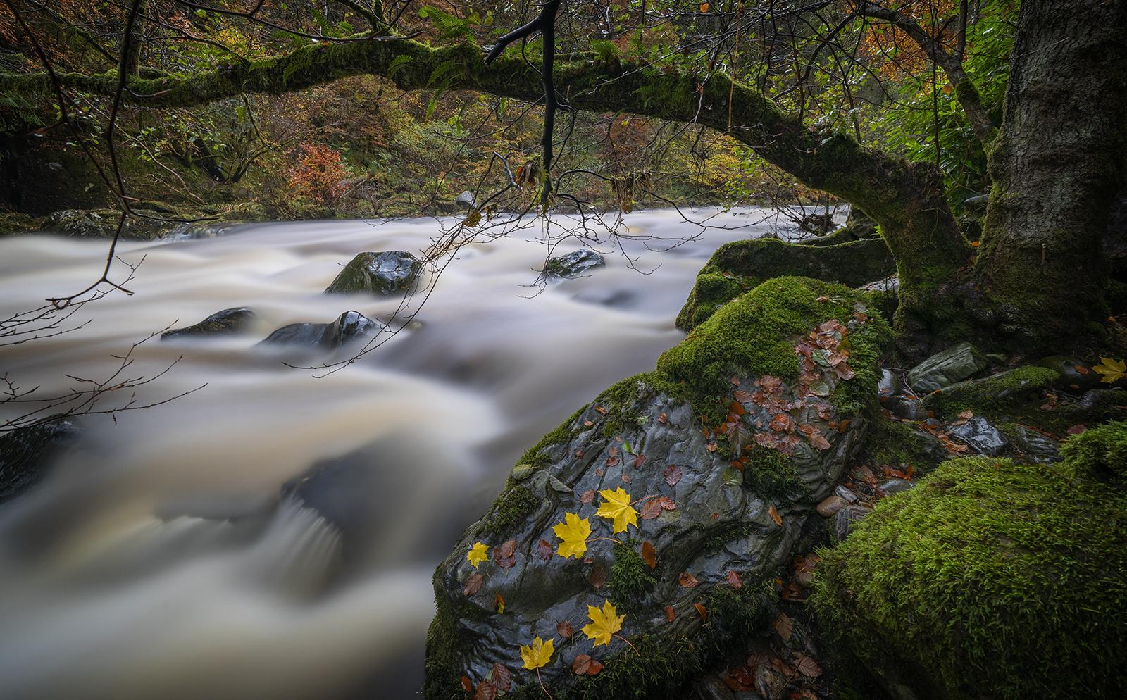 Ghost river.jpg