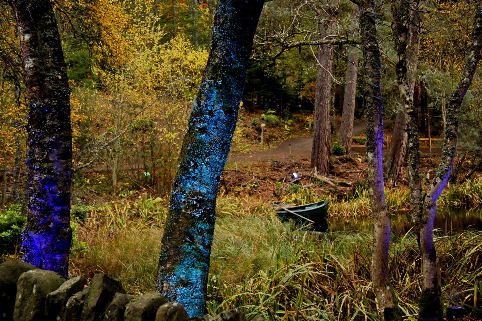 Odd-forest