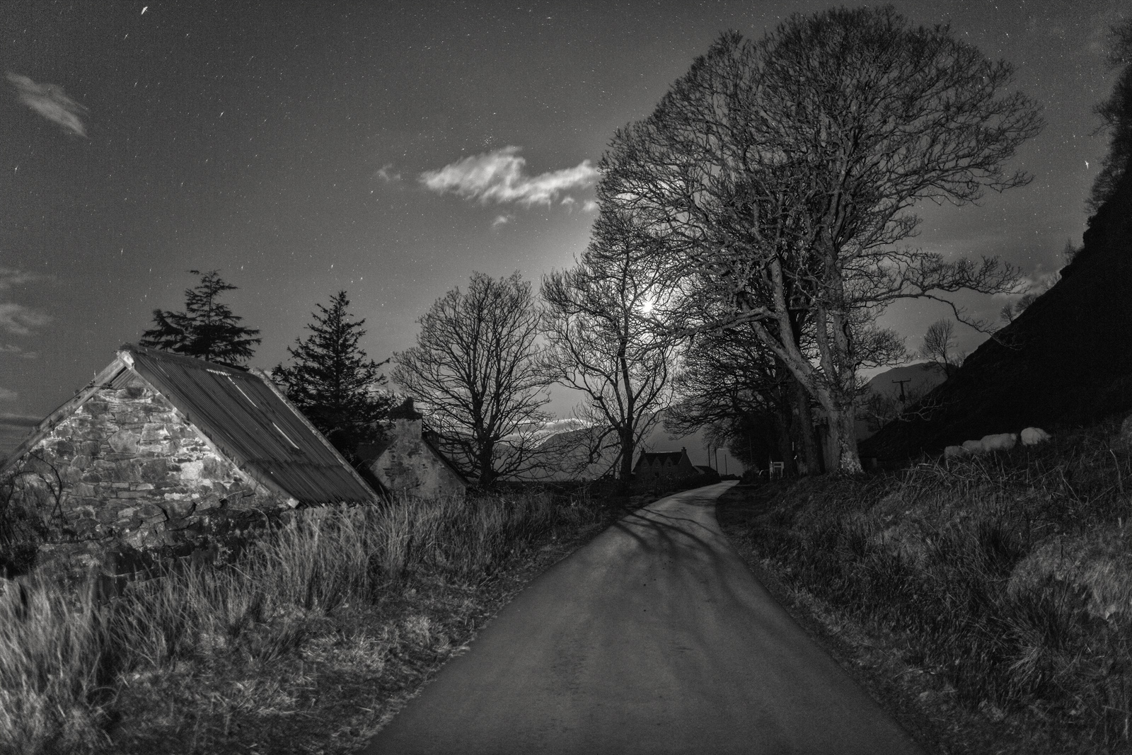 Moonlit road through the hills