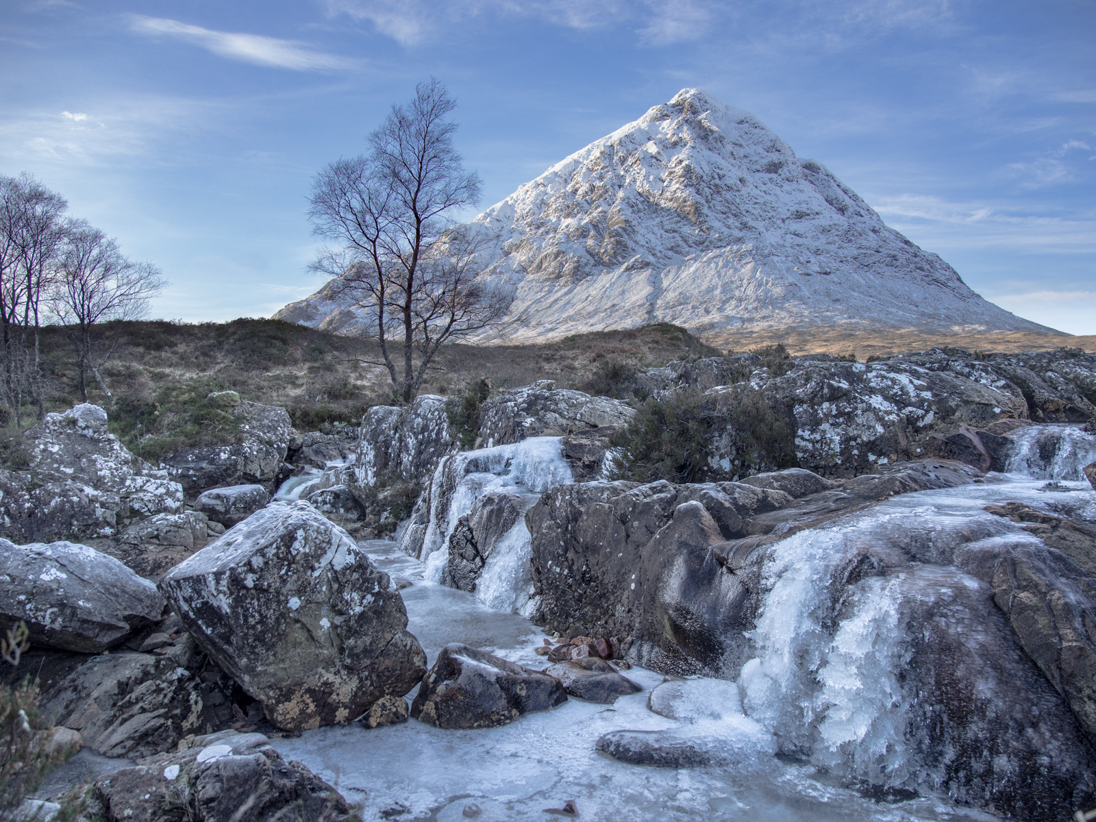 Glencoe freeze-10808653