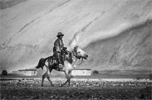 Weary Farmer - Tibet by Tom Gardner