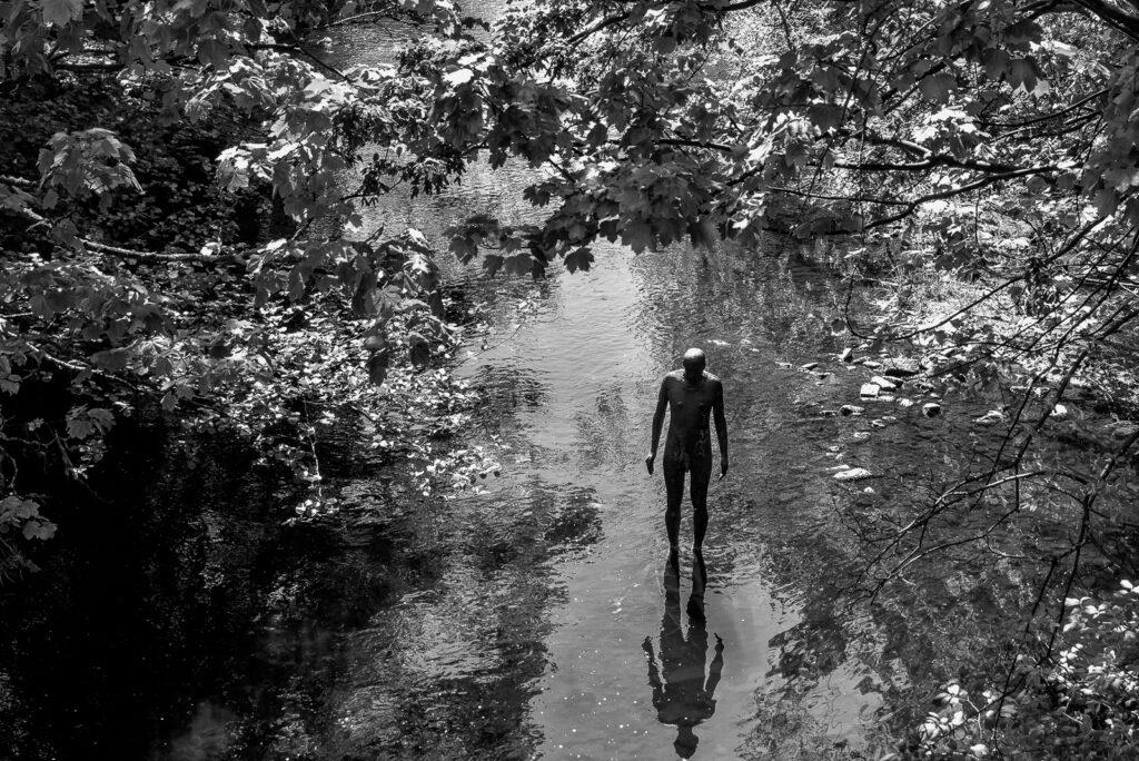 David Greer - Lonely in Lockdown_ (1 of 1)