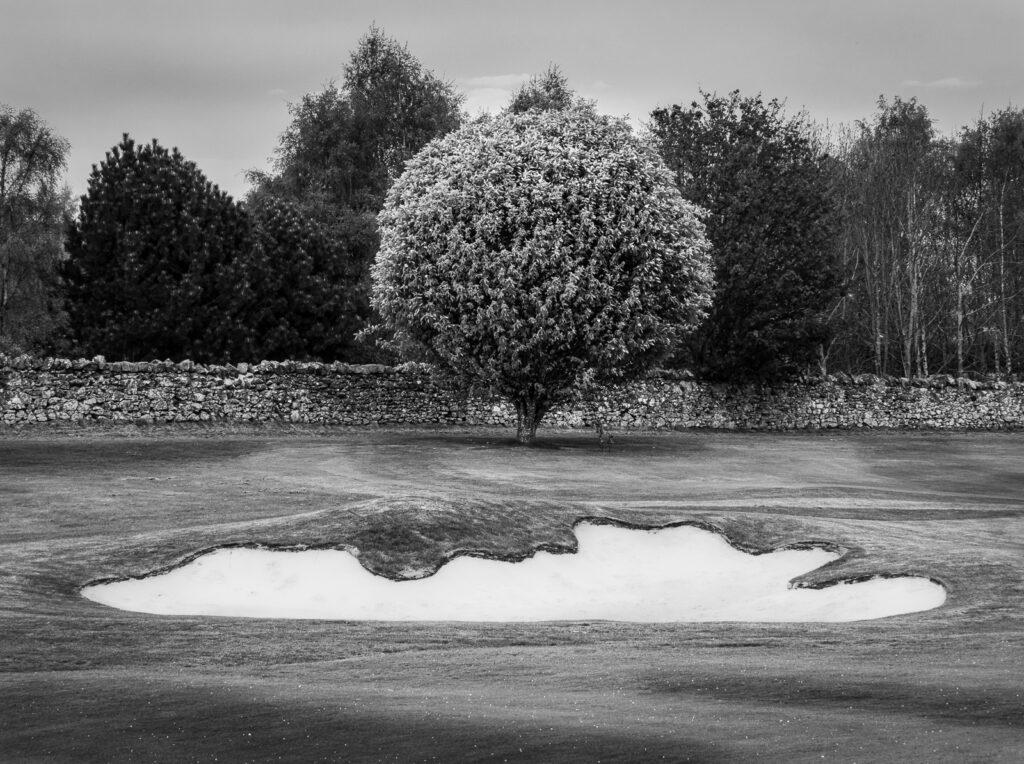 Doug Berndt - Mortonhall GC Trees and Bunkers-5