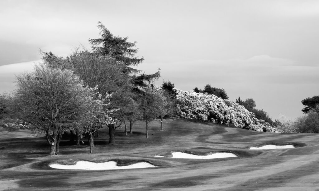 Doug Berndt - Mortonhall GC Trees and Bunkers-7