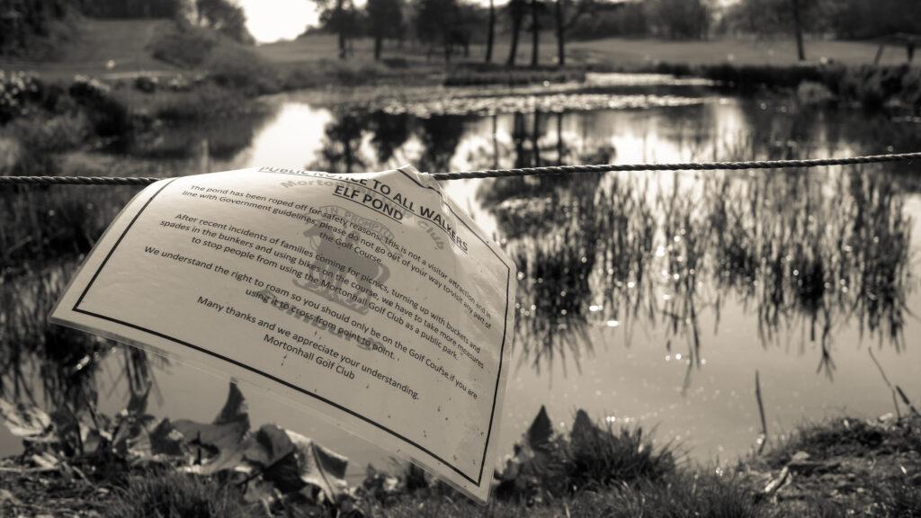 Douglas May - Elf pond-EPS Lockdown challenge 2020-6