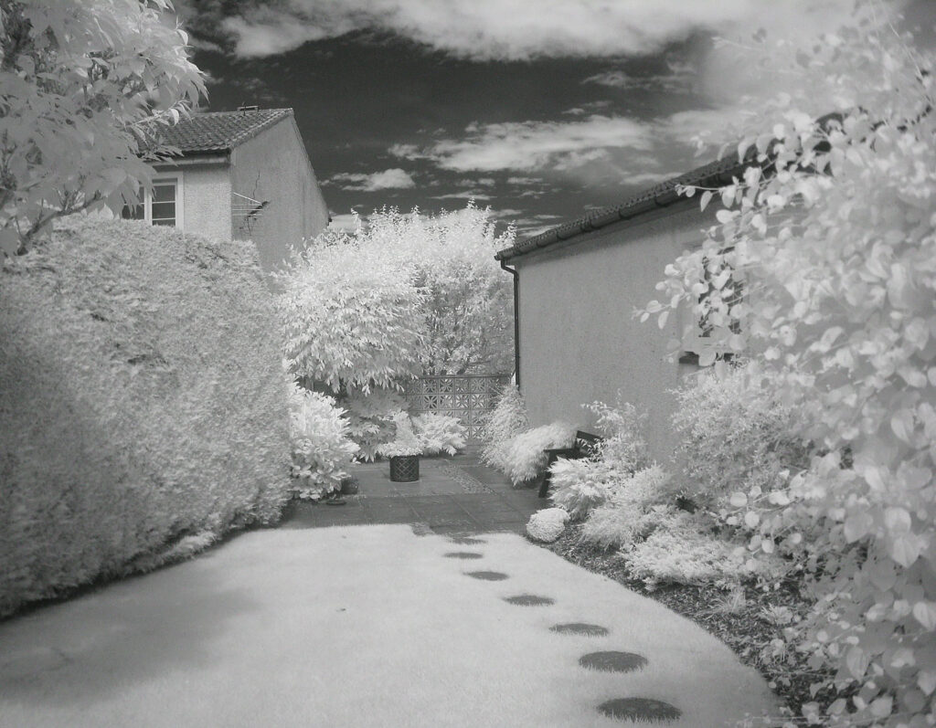 Edward Richards - IR_LooksLikeWinter