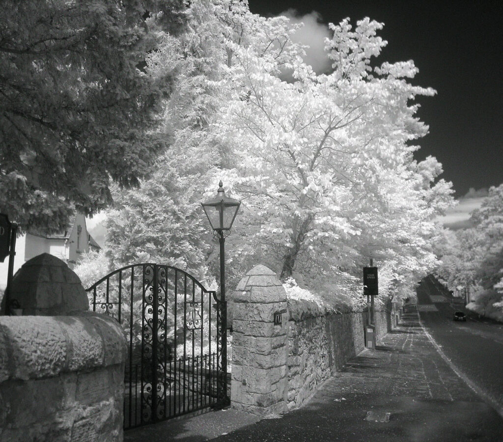 Edward Richards - IR_No174