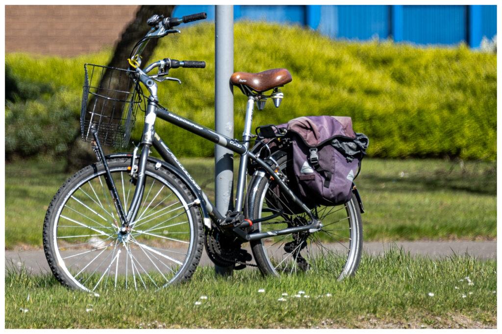 Frank Sala - Bike Secured to SignPost