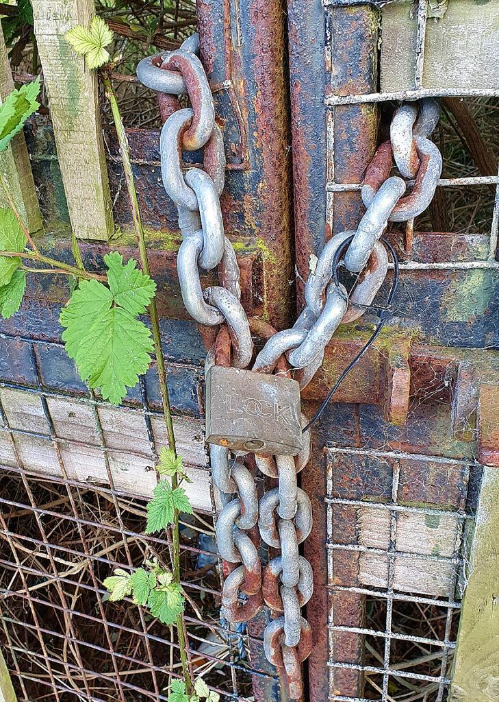 Graham Morrice - Lockdown 5