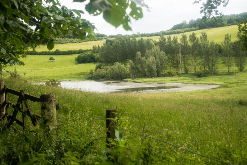 Louise Wallace - Faldonside Loch