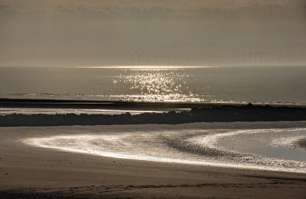 Margaret Salisbury - Curve of sea