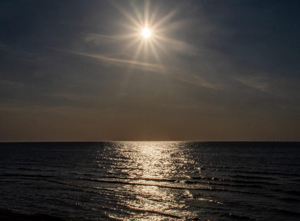 Margaret Salisbury - Sunstar evening