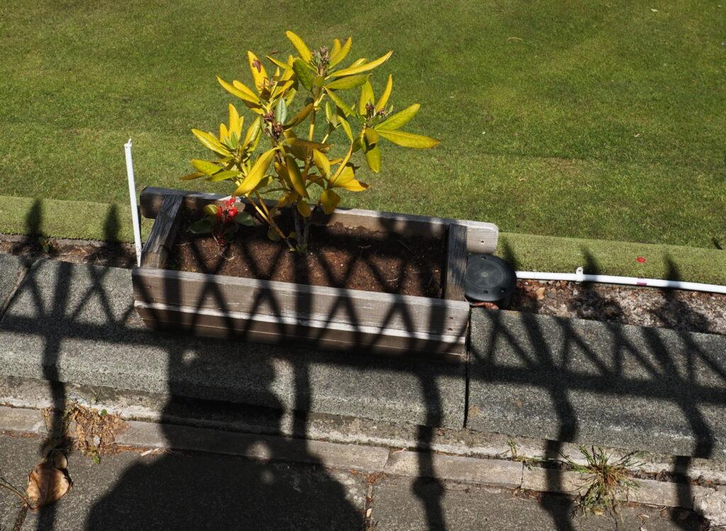 Mhairi Chambers - Outside looking in (2)