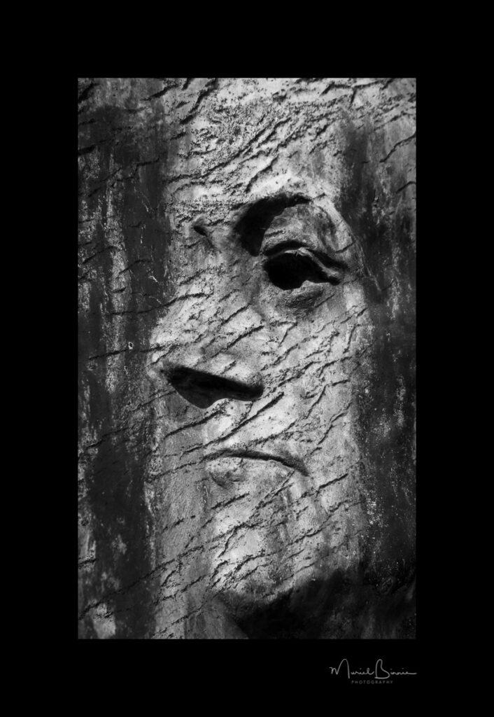 Muriel Binnie - 3 Face in the Graveyard IV - Screen-
